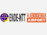 Аэропорт Энде Хасан Ароебоесман